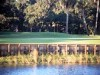 Golf Kissimmee Oaks Golf Club Orlando Florida